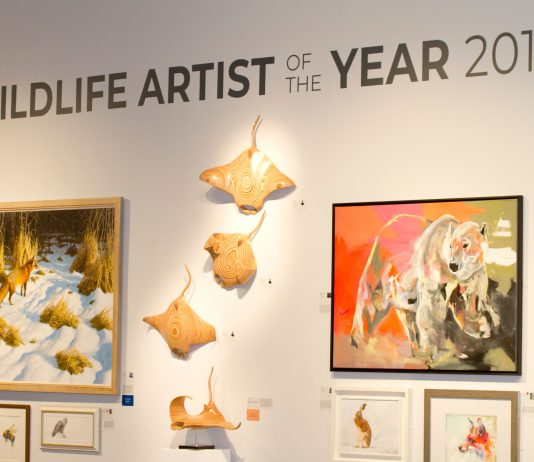 bILL pRICKETT WILD LIFE ARTIST OF THE YEAR
